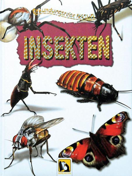 Erkundungsreise Natur Insekten