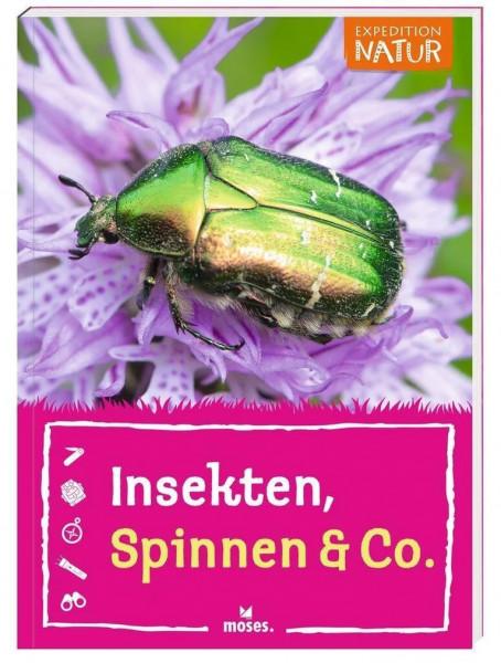 Insekten, Spinnen & Co