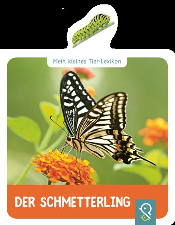 Der Schmetterling - Mein kleines Tierlexikon