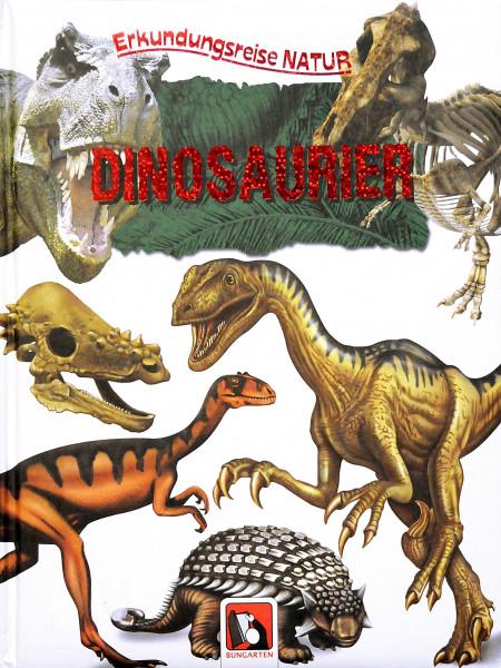 Erkundungsreise Natur Dinosaurier
