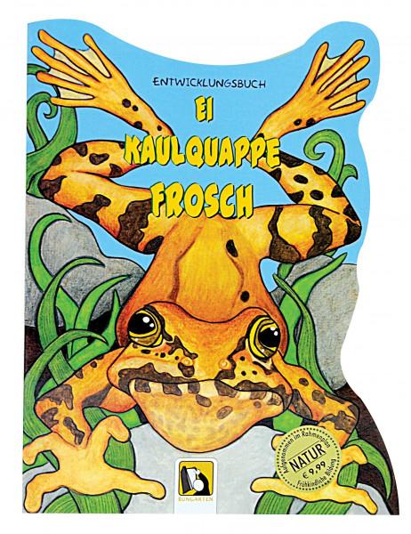 Entwicklungsbuch Ei - Kaulquappe - Frosch