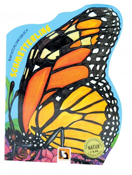 Schmetterling Entwicklungsbuch